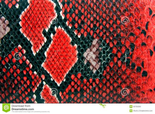 snake-skin-background-red-close-up-detail-30755263